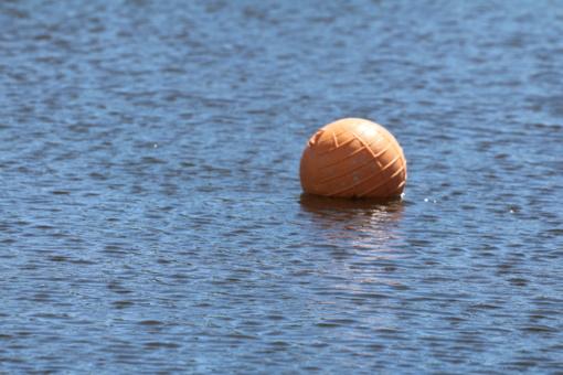Maudytis Vievio ežero Vievio miesto maudykloje galima