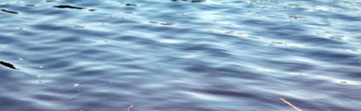 Ignalinos rajone iš tvenkinio ištrauktas skenduolis