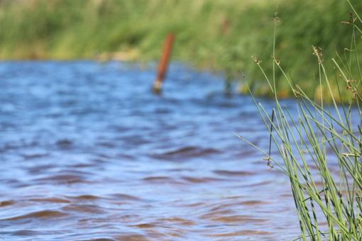 Ukmergės rajone tvenkinyje nuskendo žmogus