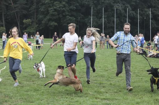 Į Vingio parką rinkosi šunų mylėtojai (FOTO)