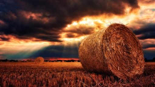 Orai: paskutinė vasaros savaitė bus lietuviška