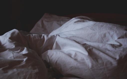Miegamojo lova – patalinių blakių rojus