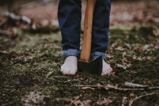 Įdiegus KTU studento sukurtą sistemą Lietuvos miškų niokojimo atvejus matysime kaip ant delno
