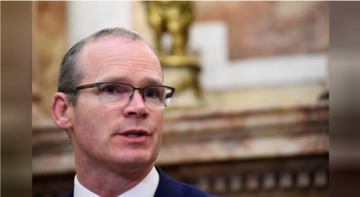 """Airijos vicepremjeras Lietuvoje ieškos palaikymo dėl """"Brexit"""""""