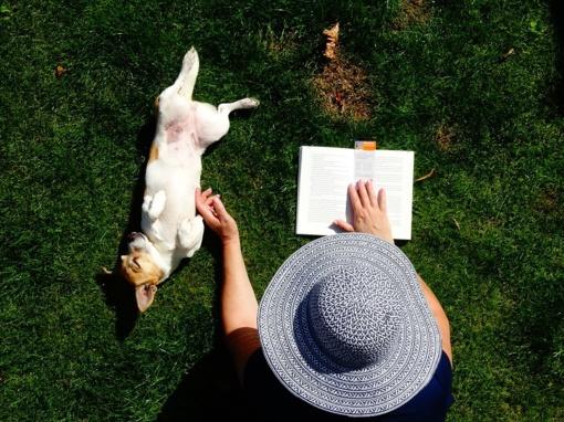 Skaitymas su šunimi tarnauja ne tik vaikams, bet ir po insulto, sergant Alzhaimeriu
