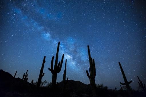 Gruodžio 11-oji: vardadieniai, astrologija