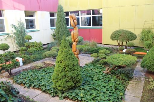 Mokykla, skendinti augaluose