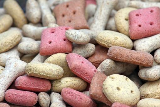 Ukrainos augintinių pašarų gamintoja kitąmet atidarys gamyklą Kėdainiuose