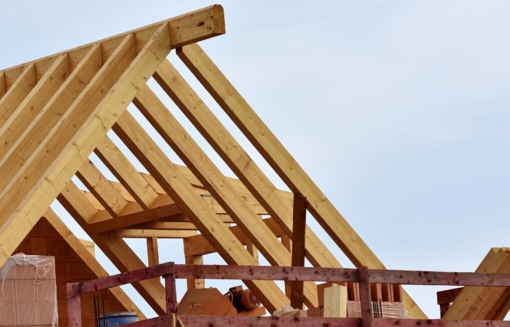 Mediniai namai. Kodėl verta statyti būtent tokį?