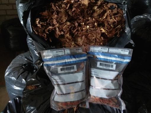 Alytuje muitinės kriminalistai sulaikė 80 tonų tabako: įtariama, kad Lietuvoje kuriasi žaliavos šešėliniams tabako fabrikams tiekėjai