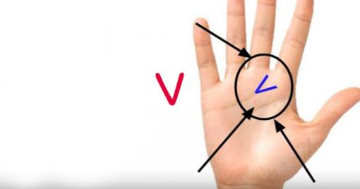 """Ar ant jūsų delno yra raidė """"v""""? Sužinokite ką tai reiškia"""