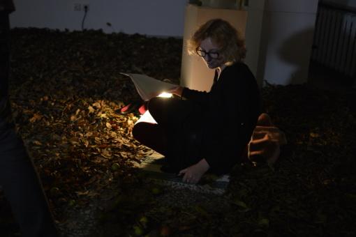 Robertos Stonkutės poezija ir miško šešėlių teatras