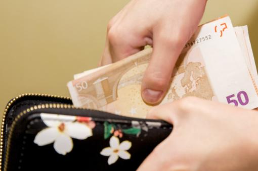 Ekonomistai: valstybė turėtų siekti didesnio biudžeto pertekliaus