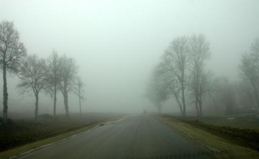 Pietų Lietuvoje bei Tauragės ir Šiaulių apskrityse eismo sąlygas sunkina rūkas