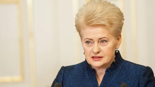 D. Grybauskaitė: Kremlius toliau kiršina kaimynines valstybes
