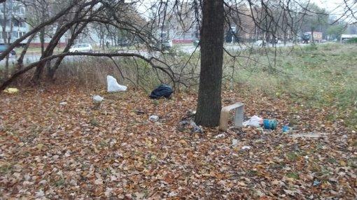Aplinkos šiukšlintojų Šiauliuose netrūksta