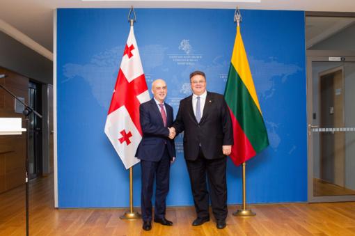 Vilniuje aptarta Sakartvelo pažanga, siekiant narystės Europos Sąjungoje ir NATO