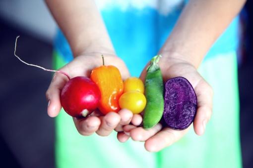 Sveikesnė mityba šaltuoju metu neišleidžiant daug – ką mano ekspertai?