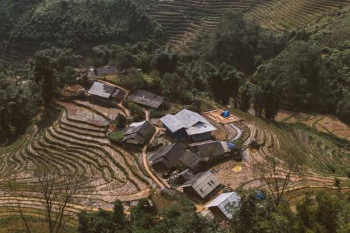 Kinijoje atrastas beveik 2 000 metų senumo vynas