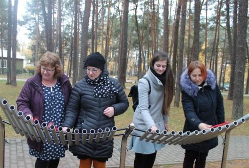 """Alytaus muzikos mokyklos ir """"Svefi"""" (Haparanda, Švedija) """"Nordplus"""" suaugusiųjų švietimo projektas"""