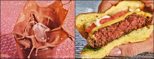 """Ateities valgiaraštis: vabzdžiai, piktžolės ir vegetariški """"kraujuojantys"""" suvožtiniai"""