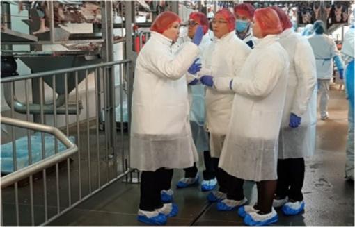 Pietų Korėjos ekspertų auditas - žingsnis paukštienos eksporto link