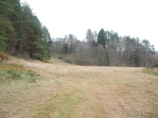 Upninkų seniūnijoje sutvarkytas dar vienas piliakalnis
