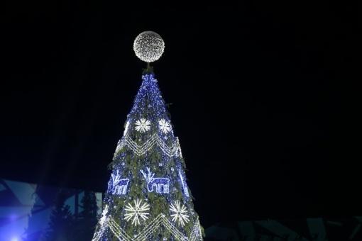 Kalėdinę eglutę įžiebė Marijampolė