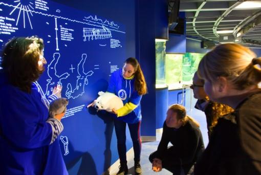 Jūrų muziejus kviečia nerti į interaktyvaus pažinimo jūrą