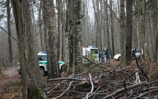Vos per valandą surasti miške bandę pasislėpti įtariamieji (vaizdo įrašas)