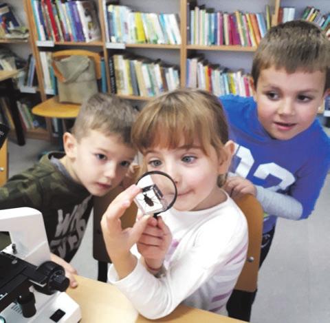 Pasaulis pro mikroskopą