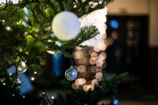 Kalėdų belaukiant – kaip keičiasi eglučių puošimo tendencijos Lietuvoje?