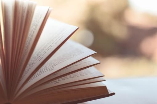 Du lietuvių literatūros dešimtmečiai: ką skaitėme tuomet ir kuo žavimės šiandien?
