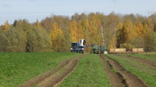 Vienas garsiausių šalies ūkininkų: pradėjau nuo nulio