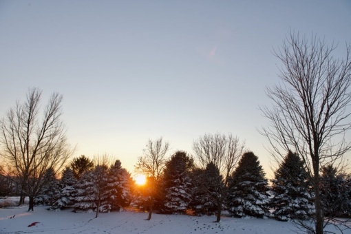 Orų prognozė: savaitgalio orai žiemos neprimins