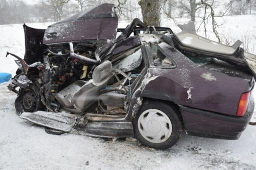 Alytaus rajone su vilkiku susidūrusio automobilio vairuotojas žuvo, moteris patyrė komą