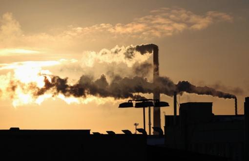 Nustatyta, kad klimato kaita gali rimtai pakenkti mūsų smegenims