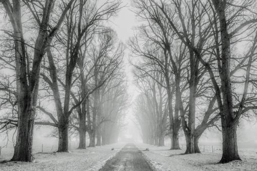 Šiaurės ir Vakarų Lietuvoje eismo sąlygas sunkina snygis