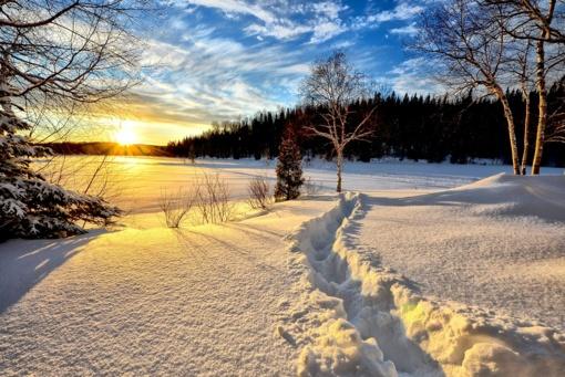 Orų prognozė: ruoškitės – sniegą pakeis žiemiški šalčiai