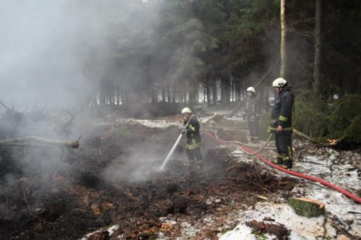 Kuršėnų regioninio padalinio miškuose numalšintas požeminis gaisras