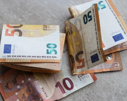 Nesaugomus pinigus vagys gaudo