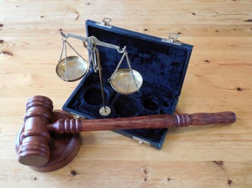 """Teismui perduota byla dėl pažeidimų """"Kabelių"""" medžiotojų būrelio teritorijoje"""