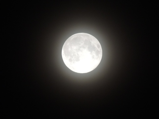 Kitą savaitę dangų nušvies neįprastai didelė pilnatis