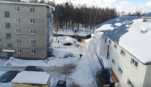 Ne laiku ir ne vietoje: moters vos nepalaidojo sniego lavina (vaizdo įrašas)