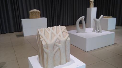 Kovo 11-ąją Fotografijos galerijos ir Keramikos paviljono parodos - nemokamai