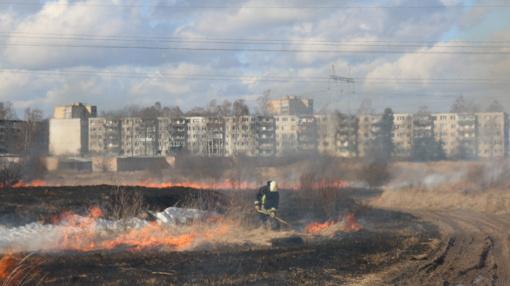 Žolės padegėjai Šiauliuose vėl įplieskė gaisrą (vaizdo įrašas)