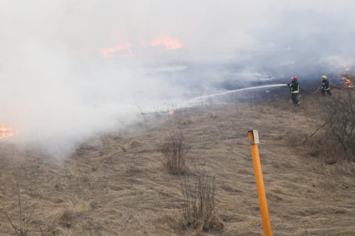 Kelyje Trakai-Vilnius gaisrininkai gesino užsidegusią žolę