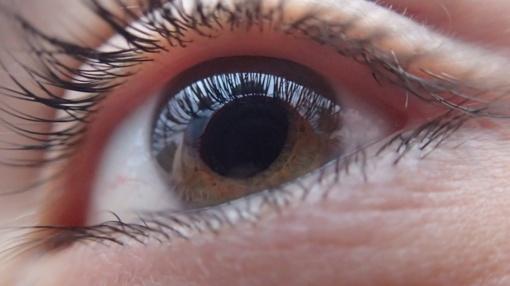 Reguliariai pasitikrindami akis, išvengsite uždelstos ligos