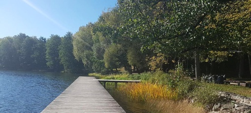 Asfalto takų prie Trakų ežerų nebus