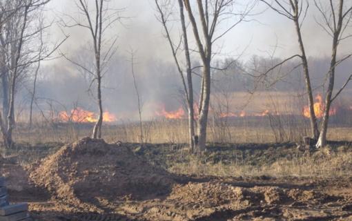 Aplinkosaugininkai primena: sudegusi žolė – nėra pievų trąša, už tai gresia baudos